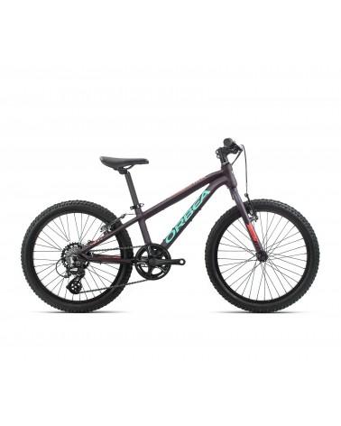 Bicicleta Orbea MX20 DIRT Purpura/Rosa