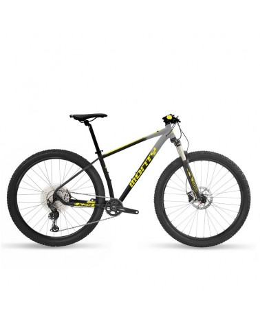Bicicleta Monty KZ9 2021